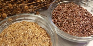 Gold and bronze linseed flax varieties are equally nutritious
